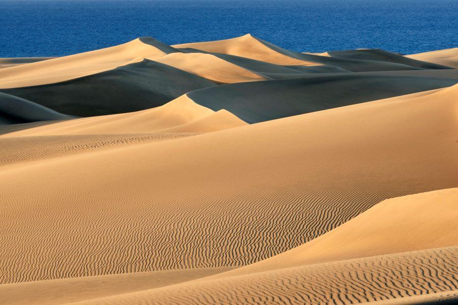 Gran Canaria Vista general de las dunas durante el confinamiento - Gran Canaria.- El confinamiento devuelve a las Dunas de Maspalomas sus ondulaciones y paisaje de ensueño de hace 50 años