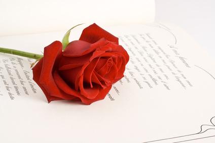 libro y rosa - 23 de abril de 2020 -Día del libro- con Un viejo que leía novelas de amor: Homenaje a Luis Sepúlveda