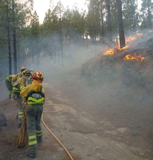 EIRIF Incendio GC 2 1 - Transición Ecológica inicia trabajos de restauración en las zonas afectadas por el incendio de Gran Canaria